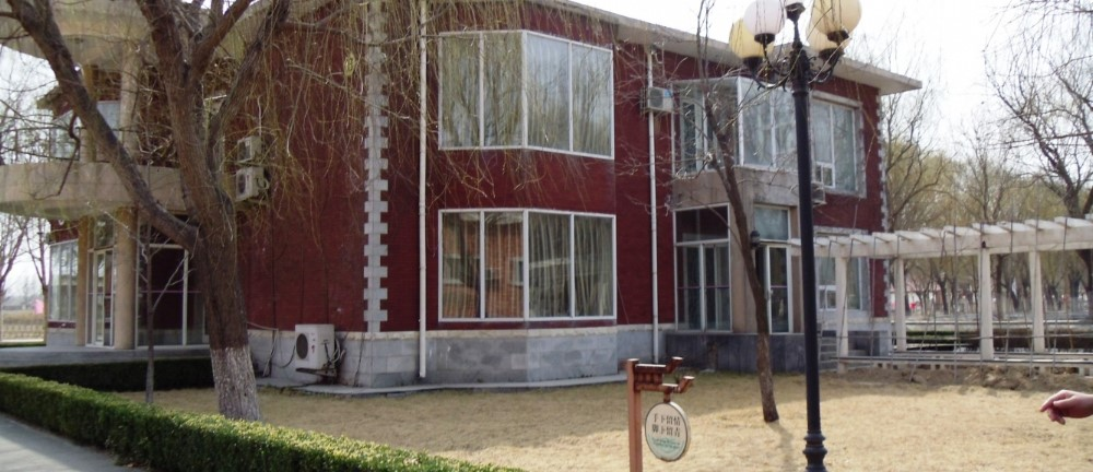 Летний лагерь WORLDTEAM 2018